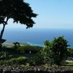 Hawaii - Kona Kahvesi