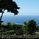 Hawaii – Kona Kahvesi