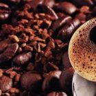 Kahve Avrupa'ya gelir