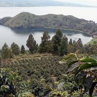 Sumatra Bölgesel Kahveleri